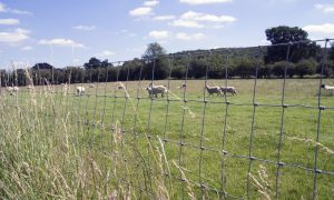 Fencing for Farms Midlands